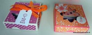Geburtstagskuchenbausatz 5 € pro Box