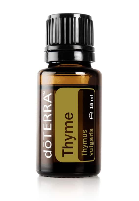 Cimbru – Thymus vulgaris – Cimbru