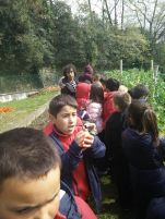 the-english-school-visita-parque-viveros-ulia1