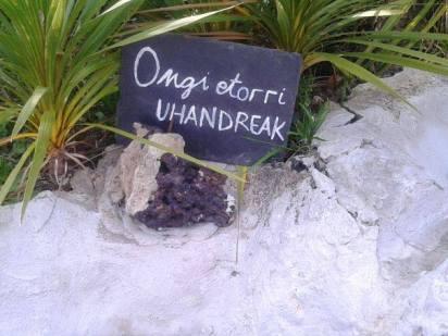 uhandre-palmatura-uliako-mintegien-parkea