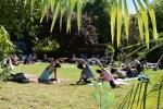 Yoga Udaberriko Jaialdian, Uliako Mintegiak parkean