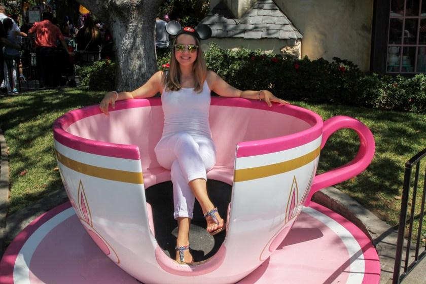 Disneyland (31)