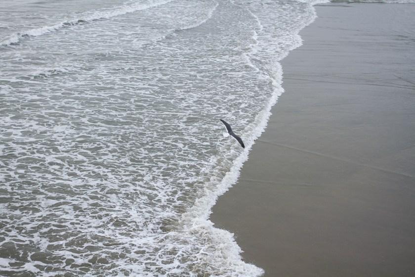 Winter-ocean-1465