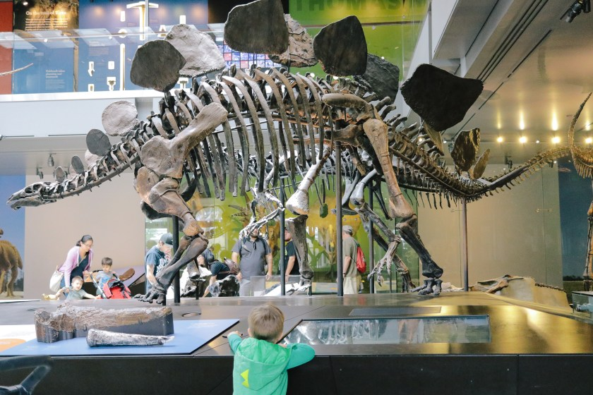 Natural-History-Museum-2831