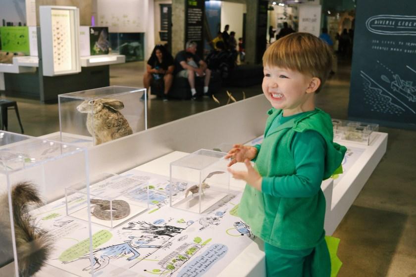 Natural-History-Museum-2845