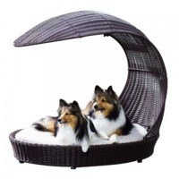 5 Different Types of Dog Beds and Dog Bed Accessories