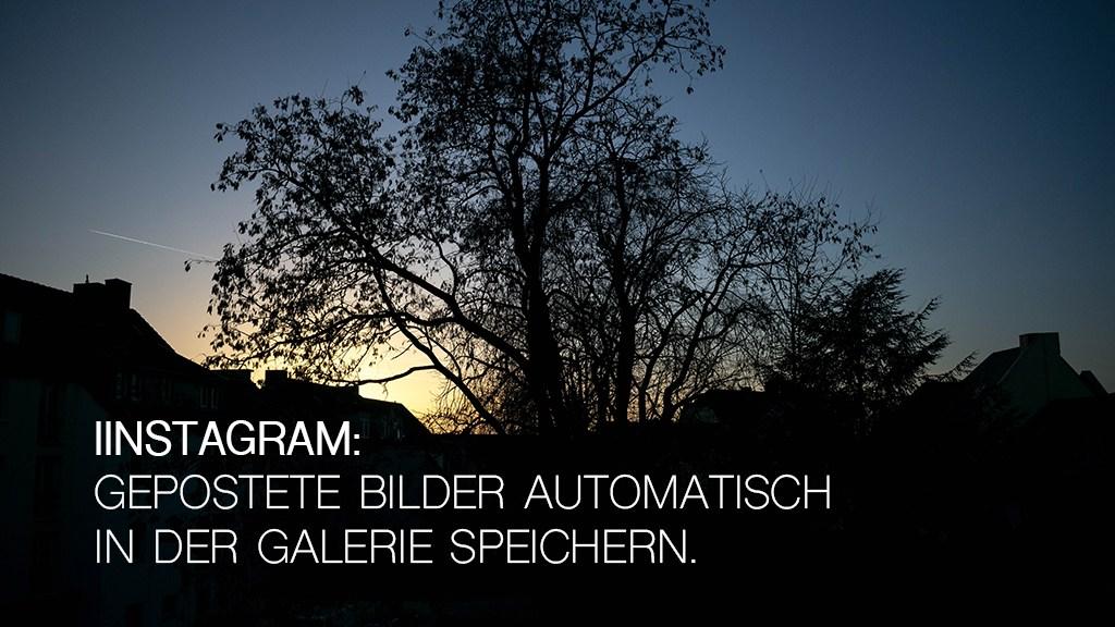 instagram_bilder_speichern
