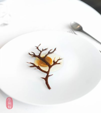 """26th Course: """"Naked Tree"""""""