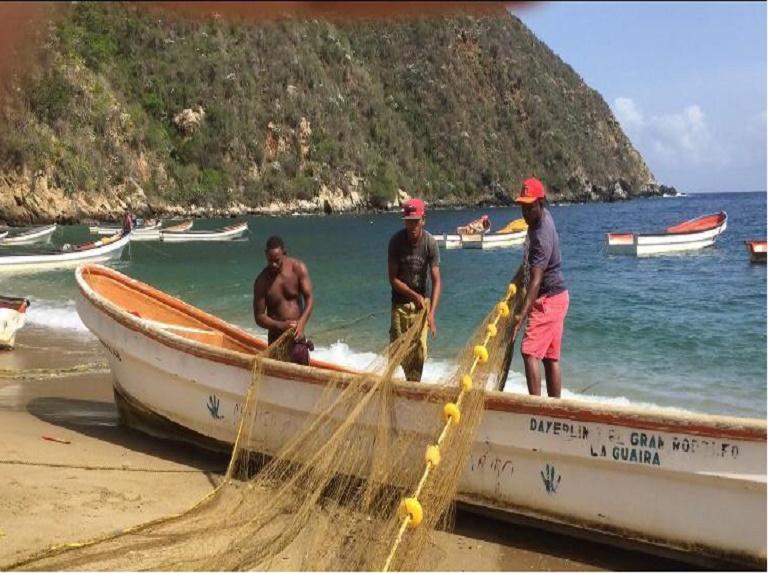 Jefe de Estado anuncia el inició de la zafra de la sardina en el país