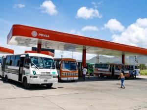 Por la radical en Nueva Esparta solo venderán combustible a sectores priorizados