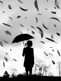 Raining feathers by Ruby125 on deviantart.com