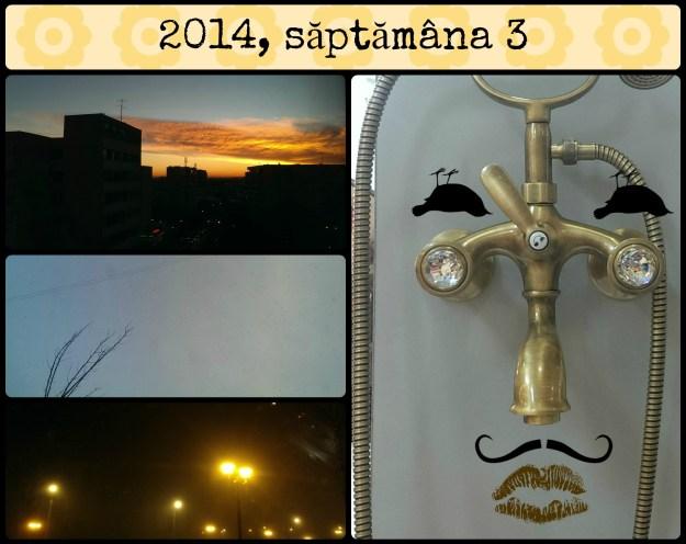 saptamana3-2014