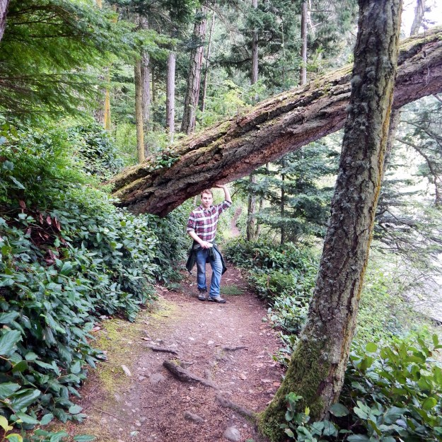 Deception Pass State Park, Whidby Island, Washington