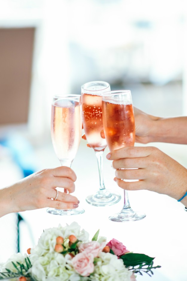 Pink champagne toast. A Summer Picnic Bridal Shower | Ultimate Bridesmaid | Jill Gearhart Photography