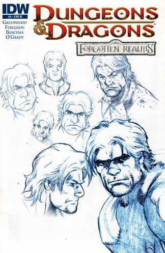 Dungeons and Dragons Forgotten Realms #2 1:10 Retailer Incentive Variant RI
