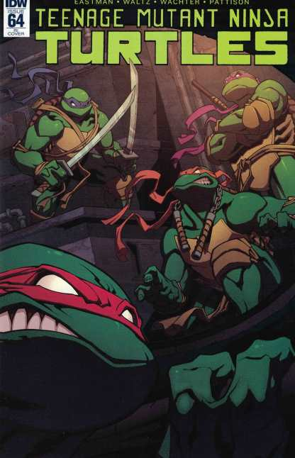 Teenage Mutant Ninja Turtles #64 1:10 Retailer Incentive Variant RI IDW TMNT