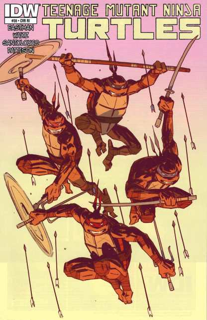 Teenage Mutant Ninja Turtles #38 1:10 Retailer Incentive Variant RI Ongiong IDW