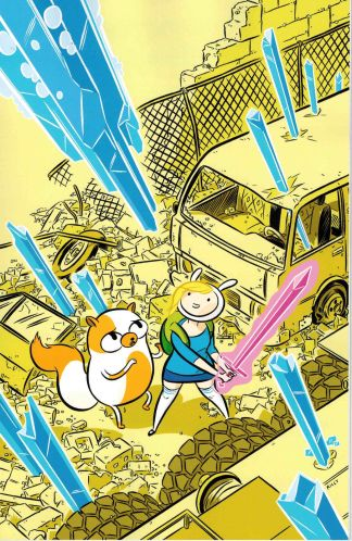 Adventure Time with Fionna & Cake #1 1:20 Cover D Ethan Riley Variant Boom 2012