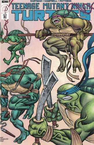 Teenage Mutant Ninja Turtles #113 1:10 Lesniewski Variant IDW 2011 Eastman