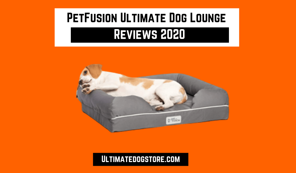 PetFusion Ultimate Dog Lounge Review