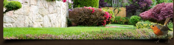 ultimate landscaping full service