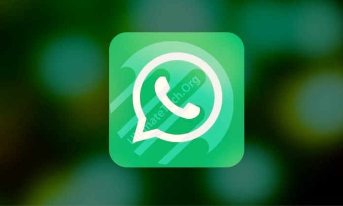 How To Setup Auto Reply in Whatsapp on iPhone?