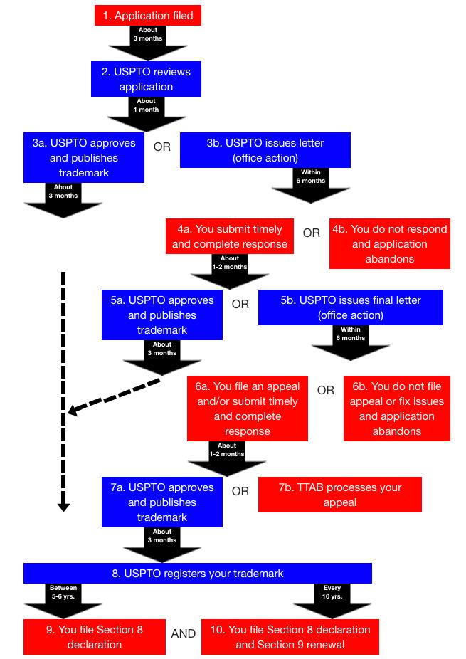 USPTO trademark examination timeline.