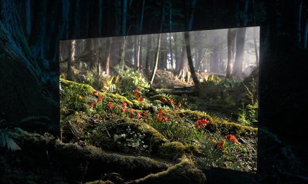 Sony macht Launch der Bravia Oled AF8-Serie zur Vernissage