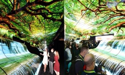 OLED Falls von LG verzaubern Besucher der CES in Las Vegas