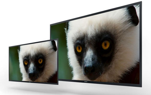 Sony: 30- und 56-Zoll-OLED-4K-Monitore vorgestellt