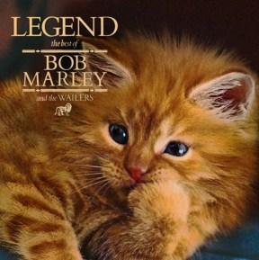 Bob Meowley and the Wailers