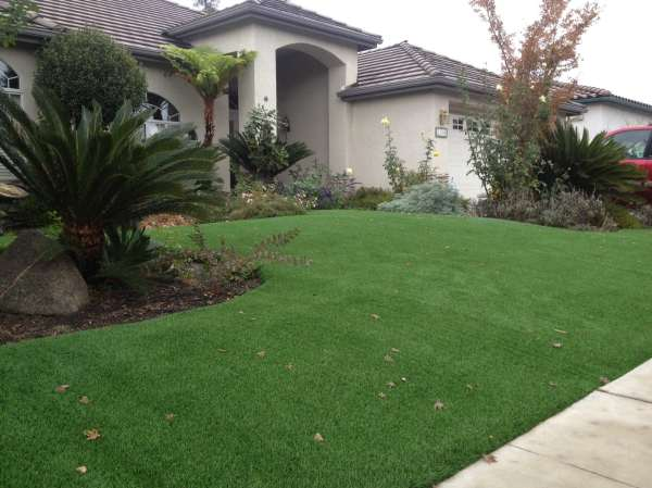 california home landscaping turf