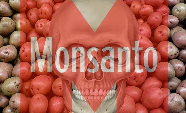 Monsanto GMO Genocide