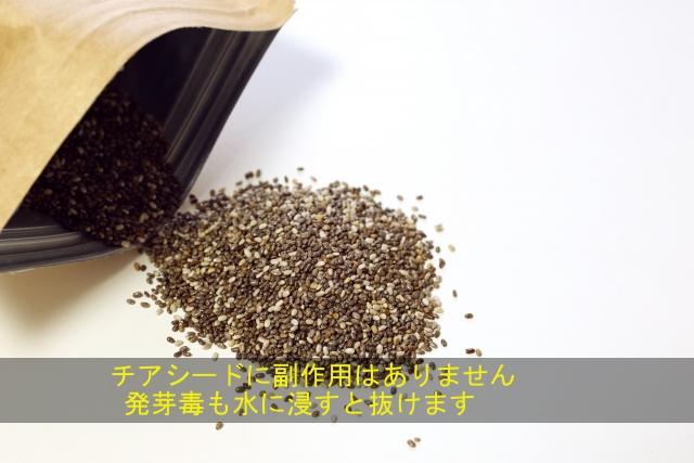チアシード_副作用640
