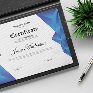 Certificate Printing India