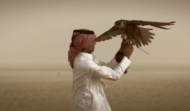 mechanical production companies in qatar, filming doha, equipment rent in Qatar, qatar filming company