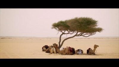 Film making company in Qatar