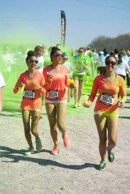 Color Vibe 726