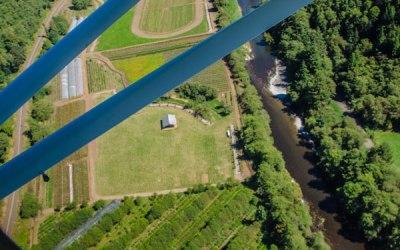 Hydrangea Ranch Photos