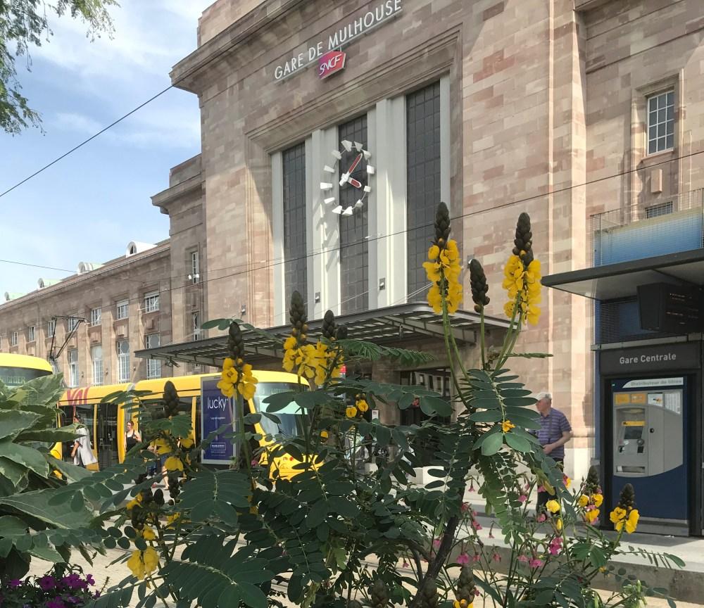 Trams excelentes distribuem os passageiros por diferentes linhas em Mulhouse