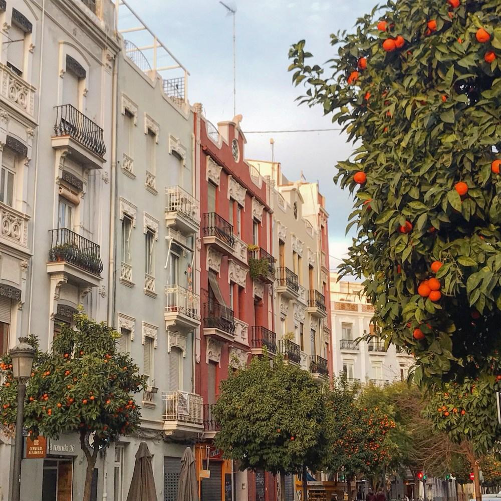A Comunidade Autônoma de Valencia é produtora de laranjas e clementinas, presentes em diversas ruas