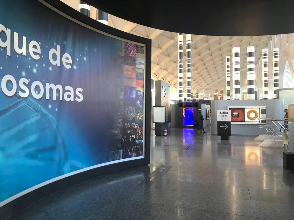 O terceiro andar do Museu das Ciências de Valência, Espanha