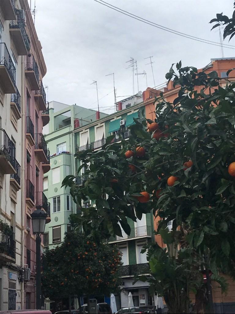 Como tradição por toda Valencia, as laranjas também estão nas ruas de Ruzafa