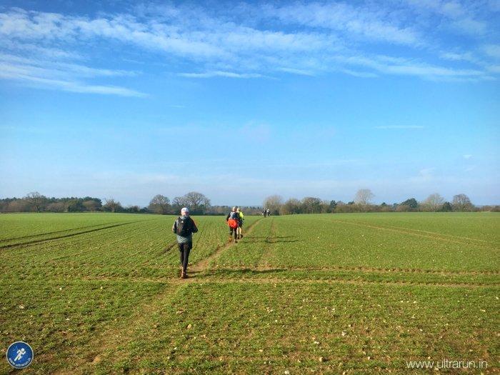 Greener fields under blue skies