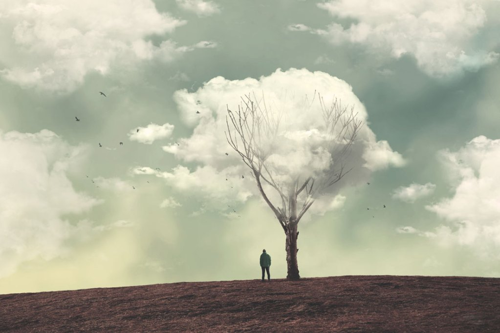 trends-soledad