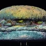 Moldy-Whopper-1-UV