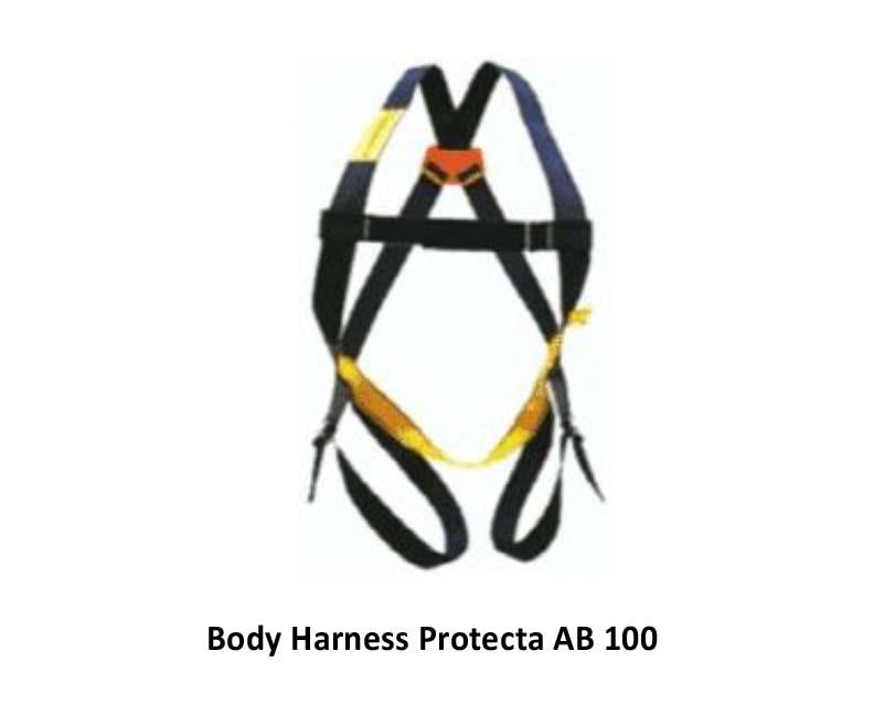 Full Body Harnes