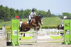 障害飛越競技馬の調教や競技会出場も。