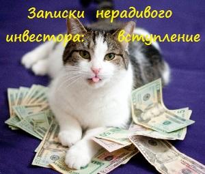 инветор-котэ