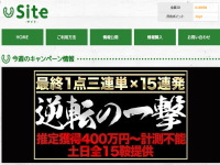 site(サイト)のトップキャプチャー